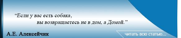 8я цитата А.Е. Алексейчик